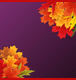 autumn natural leaves background vector image vector image