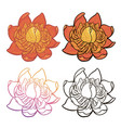 cartoon flower color and black and white version vector image vector image