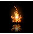 fire with reflection vector image vector image