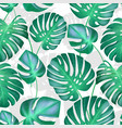 seamless tropical leaves pattern strong vector image