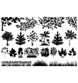 Silhouette of floral elements vector image vector image