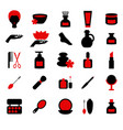 beauty and makeup icons beauty and makeup icons vector image