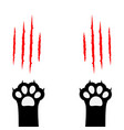 black cat scratching paw print leg foot set vector image