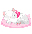 Cute white cat vector image