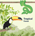 Eco style life forest Wildlife Forest vector image vector image