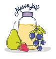 mason jars drawing vector image