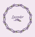 beautiful lavender flowers wreath vector image vector image