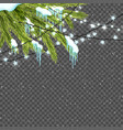 Border with realistic fir-tree snow icicles and