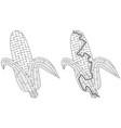 corn maze vector image