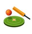 cricket sport game field and sporting items bat vector image vector image