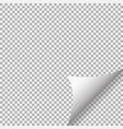 curled corner paper with shadow on background vector image vector image