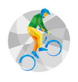 cycling bmx with abstract patterns vector image