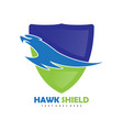 hawk bird shield logo vector image vector image