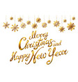 merry christmas and happy new year holiday with vector image vector image