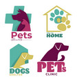 pets health veterinary clinic and dogs shelter vector image