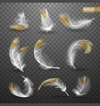 set of isolated gold falling white fluffy twirled vector image