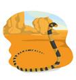 snake in desert vector image vector image