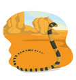 snake in the desert vector image vector image