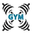 dumbbells for gym vector image