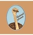 Animal planet Logo Symbol