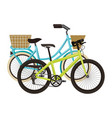 antique bicycle with basket and racing bike vector image vector image