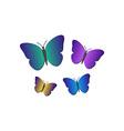 Butterflies 380x400 vector image vector image