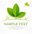 Green leaves branch on white vector image vector image