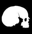 simple skull in profile vector image vector image