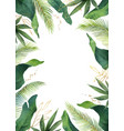 watercolor banner tropical leaves isolated vector image vector image