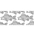 bass fish contour pattern vector image vector image