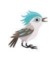 beautiful blue jay bird on a vector image vector image