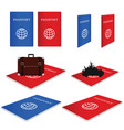 passport red and blue with vintage suitcase vector image