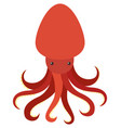 red octopus on white background vector image