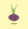 Red onion with fresh green sprout vector image