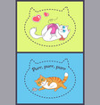 set of pretty banners with playing funny cats vector image vector image