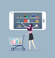 shopping online - woman shopping online by vector image vector image