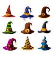 witch magician wizard or warlock halloween hats vector image vector image