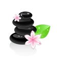 zen stones with flower and leaf vector image