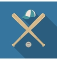 Baseball icon vector image