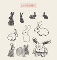 collection realistic rabbits drawn sketch vector image vector image