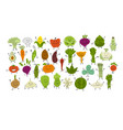funny smiling vegetables and greens characters vector image vector image