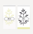 ruta or rue in outline and silhouette style vector image vector image
