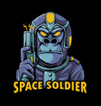 space soldier vector image