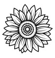 sunflower flower black and white of vector image vector image
