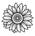 sunflower flower black and white vector image