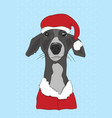 n christmas clothes can be used as a greeting vector image