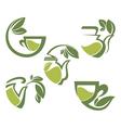 warm herbal tea vector image vector image