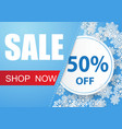winter sale banner design with snow in blue vector image vector image