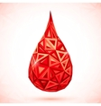 Abstract triangles drop of blood vector image vector image