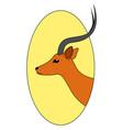 beautiful antelope on white background vector image
